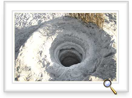 A deep hole showing the layers of sand and shells.